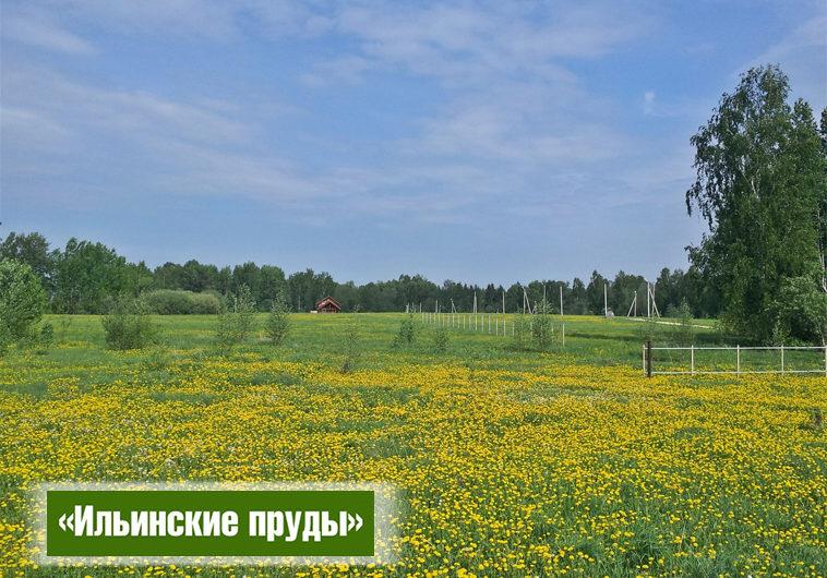 Участок 15.28 сот. в поселке Ильинские пруды (ID: 3501)