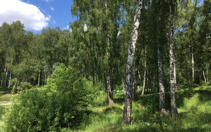 Участок 13.73 сот. в поселке Лобаново (ID: 3517)