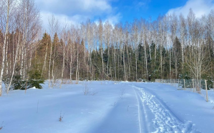 Участок 22.72 сот. в поселке Хвойный лес (ID: 3510)